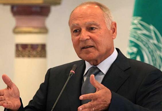 أبو الغيط: الدول العربية ستتعامل بايجابية مع أي إدارة أميركية تتعاطى مع القضية الفلسطينية