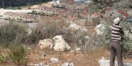 مخطط استيطاني للاستيلاء على 139 دونما من أراضي دير دبوان