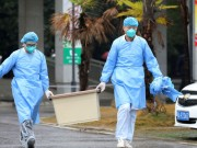 """""""الصحة العالمية"""" ترسل فريقا إلى الصين للتحقيق في أصل فيروس """"كورونا"""""""