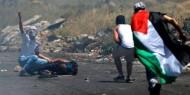اصابات بمواجهات مع الاحتلال في الخليل