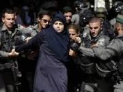الاحتلال يعتقل 19 مواطنا بينهم فتاة من الضفة الغربية