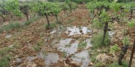 مستوطنون يضخون مياها عادمة بأراضي المواطنين في قرية اللبن الشرقية